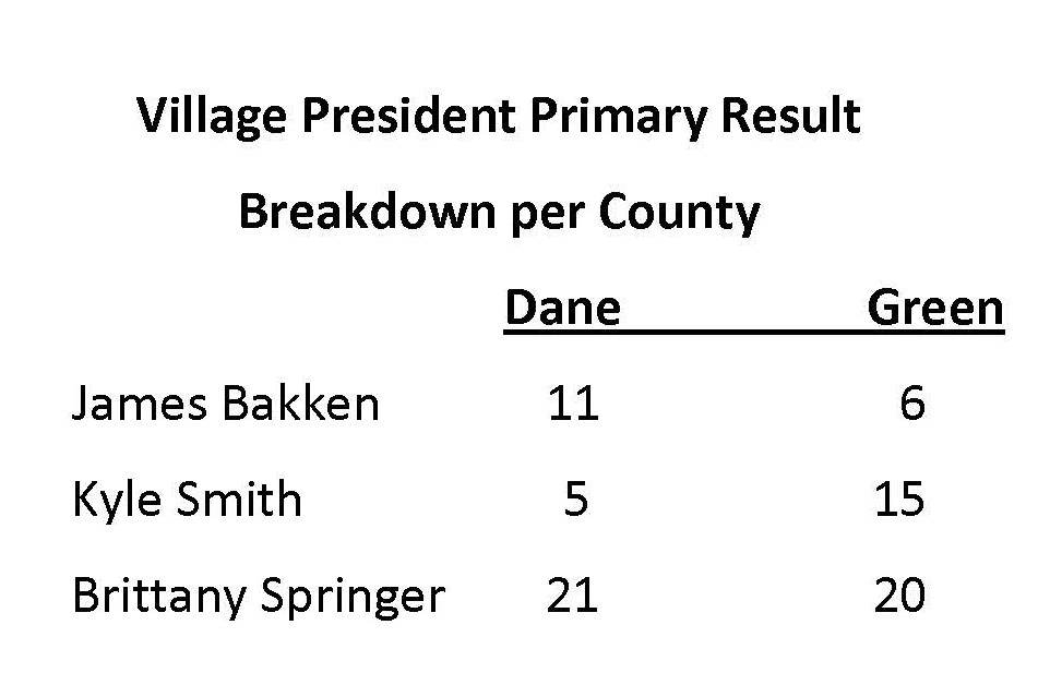 Village President Primary Result Breakdown